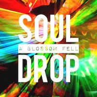 Soul_Drop
